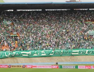 Torcedores do Goiás no Serra Dourada, para a partida contra o Barueri (Foto: Fernando Vasconelos / GLOBOESPORTE.COM)
