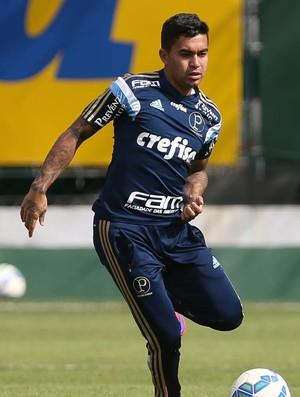 Dudu Palmeiras