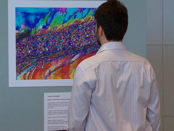 A Artbio reúne um acervo de fotos de pesquisas feitas com o uso de microscópios (Foto: Globo)