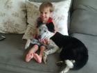 Após desmaiar de calor, cão que fugiu no Natal é devolvido a menino
