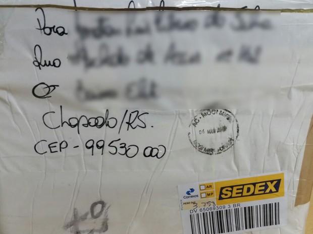 Caixa onde estavam armazenados os peixes (Foto: Ibama/Divulgação)