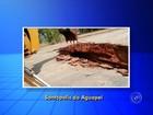 Ponte entre Santópolis do Aguapeí e Luiziânia é interditada devido à chuva
