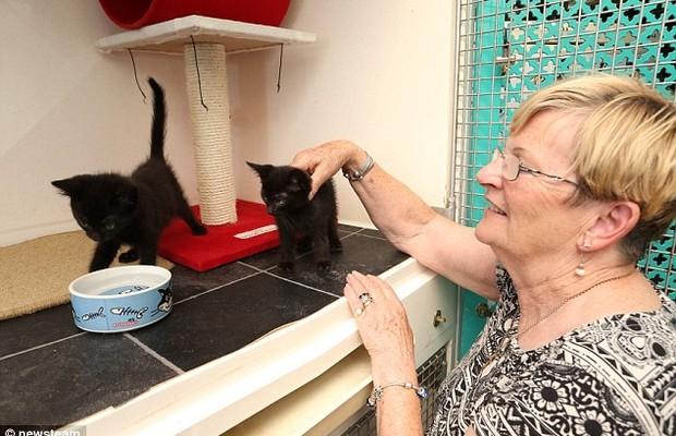 Ronnie McMillen, fundadora do Centro de Resgate Millwood, posa com um dos seus gatos (Foto: Divulgação)