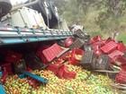 Caminhão tomba na MGC-381, entre Maria da Fé e Cristina, no Sul de MG