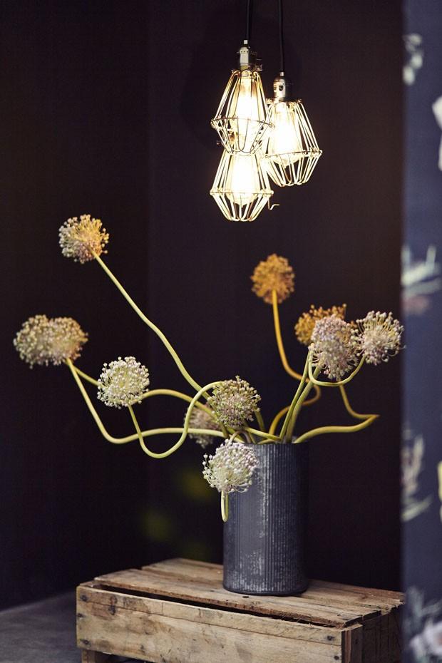 Flor de alho: sim, ela existe e é linda! (Foto: Flo Atelier Botânico)