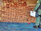 Embarcação com madeira ilegal é apreendida em porto de Manaus