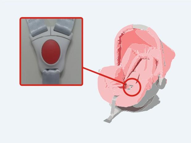 Em seu site, Galzerano aponta modelo de fivela alvo do recall (Foto: Reprodução/Galzerano)