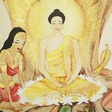 Emocione-se com a versão digital do livro 'A Vida do Buda' (Fábio Rocha/TV Globo)