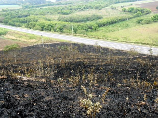 Terreno de pousada foi queimado neste domingo (19) em Charqueada (Foto: Salete Antonelli/Arquivo pessoal)