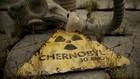 Conheça o lado esquecido de Chernobyl (Divulgação)