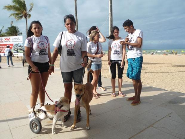 Participantes da marcha também levaram animais para a orla de João Pessoa (Foto: Adonai Golombko/Arquivo Pessoa)