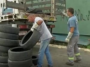 Pneus foram coletados em Suzano  (Foto: Reprodução / TV Diário)