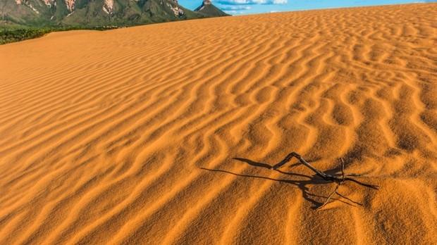 Jalapo (Foto: Marcos Amend / Shutterstock)