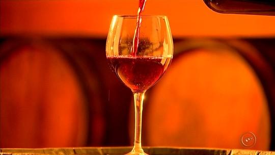 Viticultores aproveitam as baixas temperaturas e apostam na produção de vinho