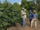 Pequenos produtores de café do Sul de Minas alcançam mercado exterior