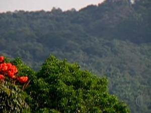 Serra do Itapeti, em Mogi das Cruzes é um dos biomas sobreviventes do desmatamento (Foto: Reprodução/TV Diário)