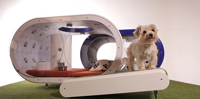 Samsung projeta casinha de cachorro tecnológica, com preço assustador (Foto: Divulgação/Samsung)
