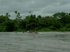Sem transporte fluvial, crianças de  comunidade 'ilhada' em MT faltam aula