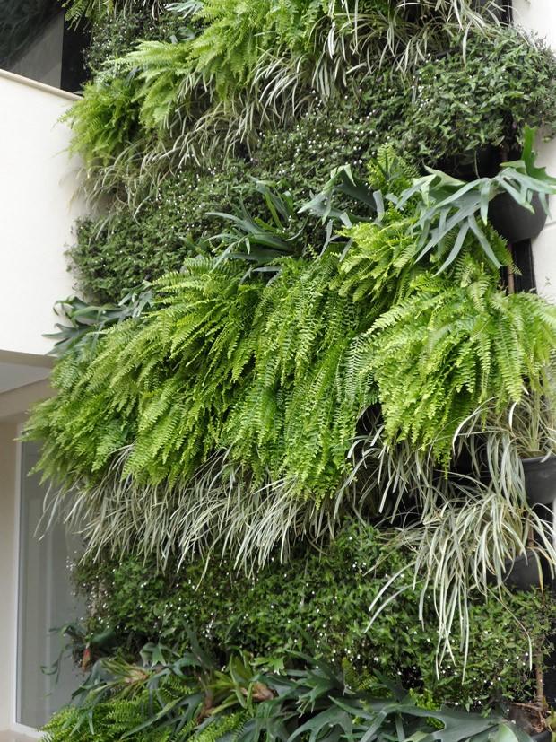 Desvendando Os Mist 233 Rios Dos Jardins Verticais Casa E