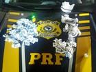 PRF prende dois homens com drogas em Duque de Caxias