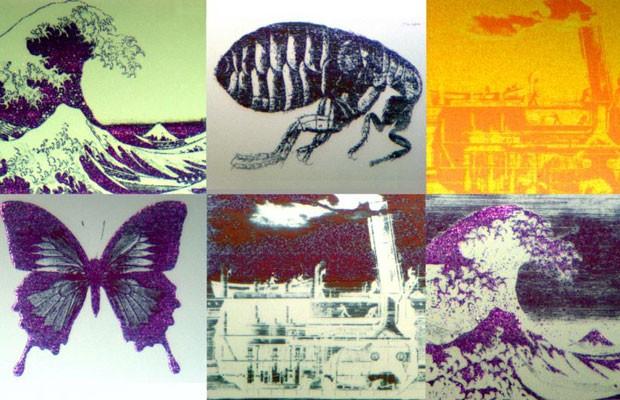 Com 70 micrômetros quadrados, cada imagem é menor do que a espessura de um fio de cabelo (Foto: Universidade de Oxford/BBC)