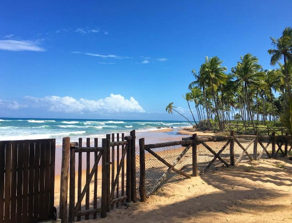 Bahia (Foto: Reprodução Instagram)