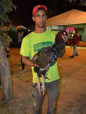 #Festa do Boi - Galinha gigante atinge até 1,10 metros de comprimento (Foto: Jocaff Souza/G1)