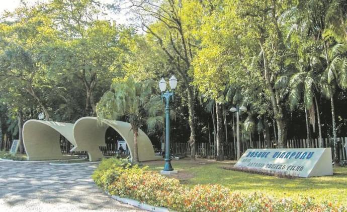 Bosque Uirapuru (Foto: Divulgação/ Fundação Cultural de Curitiba)
