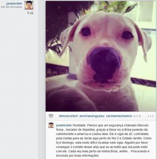 José Loreto fala sobre desaparecimento de Brisa (Foto: Instagram / Reprodução)