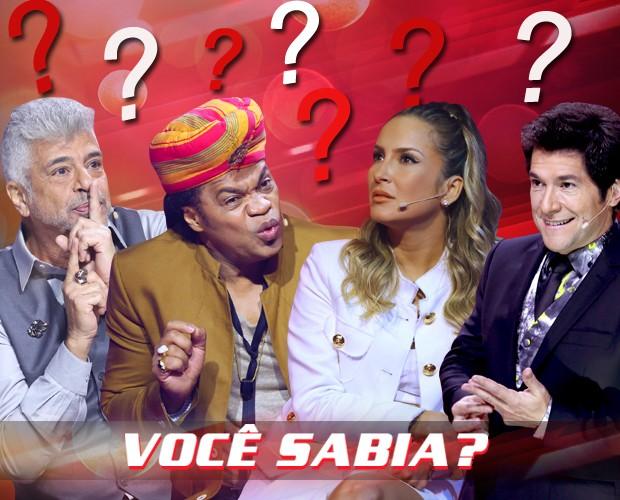 Arte você sabia (Foto: The Voice Brasil/Gshow)