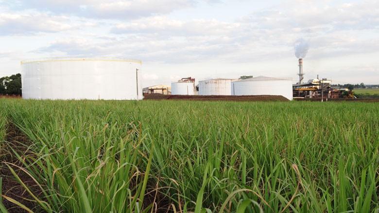 usina-cana-etanol-açucar (Foto: Editora Globo)