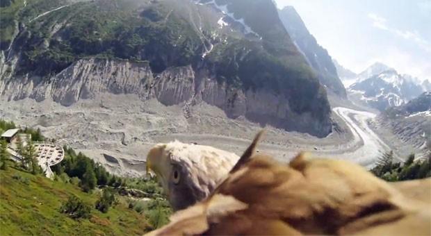 Imagem do vídeo que mostra o voo da águia (Foto: Reprodução/YouTube/Srachi)