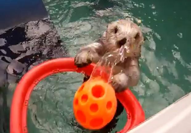 Eddie faz cestas como forma de tratamento para seus cotovelos (Foto: Reprodução)