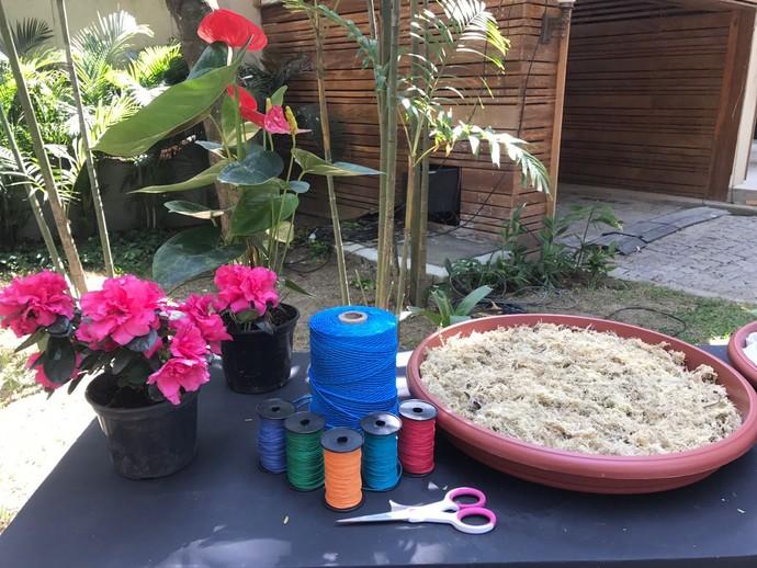 Planta, barbantes coloridos, musgo e tesoura: parte dos materiais necessários para o Kokedama (Foto: Janaina Ornellas/Gshow)