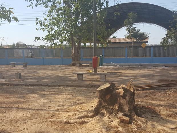 Local onde árvores estavam deve dar lugar a um estacionamento (Foto: Marco Bernardi/ G1)