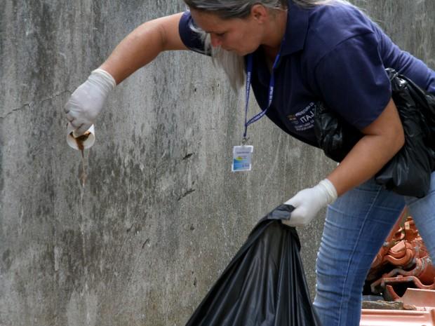 Dengue em itajaí (Foto: PMI/Divulgação)