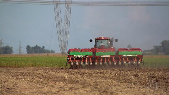 Setor agrícola tem o melhor resultado em 21 anos e impulsiona o PIB