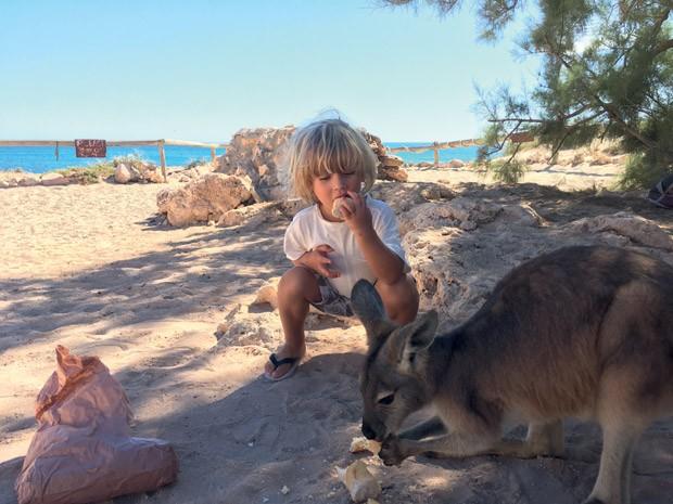 Ben alimenta cangurus na Austrália (Foto: Acervo pessoal)