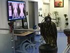 Hospital para falcões revela luxo e opulência do Qatar