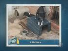 Imagens mostram cães e gatos em condições precárias em Campinas, SP