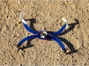 Protótipo da Nixie, uma pulseira que se transforma em um drone para, após alçar voo, tira fotos aéreas. (Foto: Divulgação/Intel)
