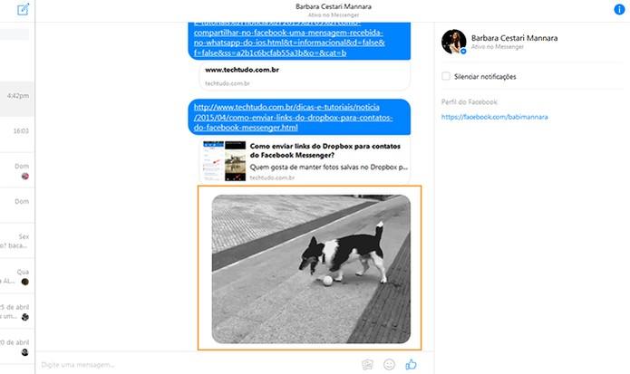 O GIF será enviado para seu amigo no Messenger (Foto: Reprodução/Barbara Mannara)