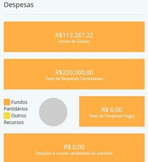 Despesas de Luizinho do PT (Foto: Reprodução/ Divulgacand)