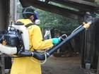 Cidades do Centro-Oeste e Zona da Mata terão combate ao Aedes aegypti