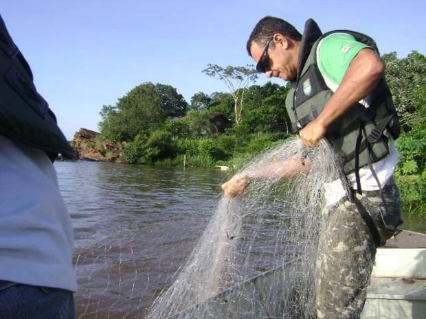 Periodo da Piracema iniciou no último sábado (1) no Tocantins (Foto: Divulgação/Naturatins)