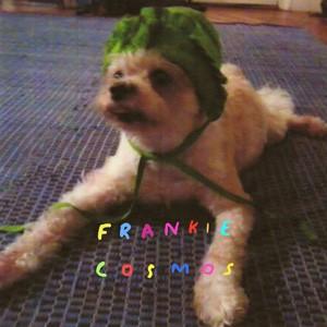 Frankie Cosmos