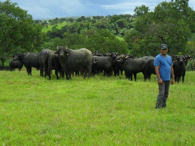 José Maria Moura da Silva, cuidador de búfalos em fazenda de Ceilândia, no Distrito Federal (Foto: Raquel Morais/G1)