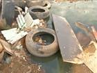 Lixo em terrenos atrapalha combate ao Aedes aegypti em Imperatriz, MA