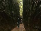 Conheça um pouco das belezas naturais de Tibagi, no Paraná