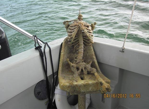 Esqueleto retirado da água era de plástico. (Foto: Divulgação/Monroe County Sheriff's Office)